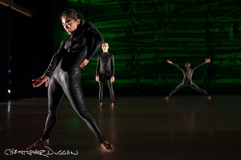 Jacob's Pillow Dance Festival 2014   LeeSaar Dance Company & Aspen Santa Fe Ballet Dance Photos