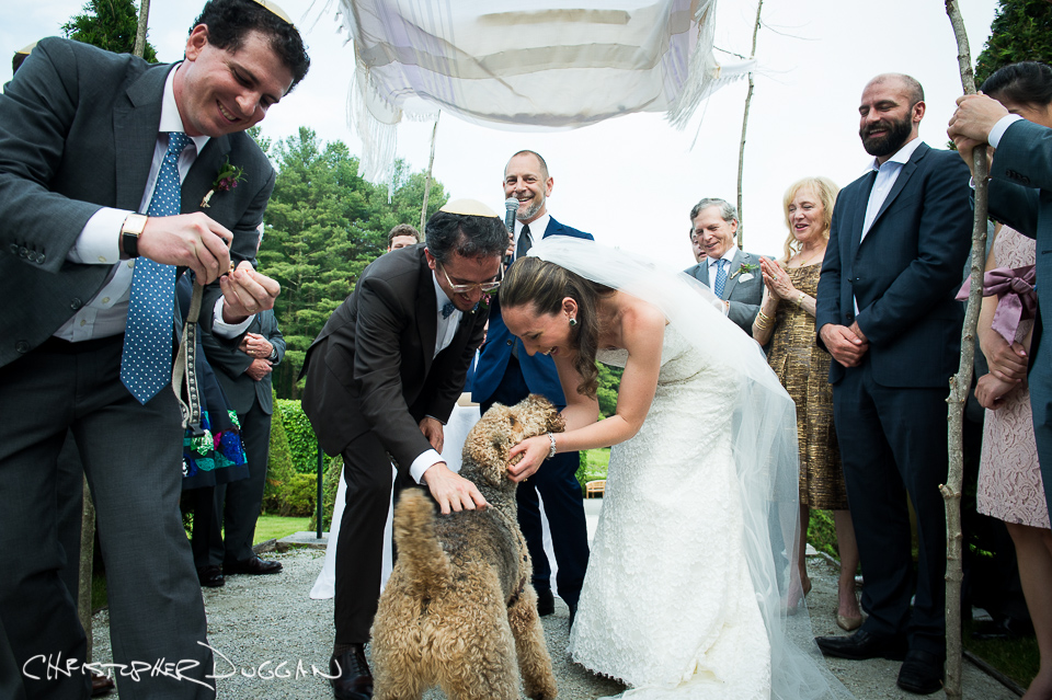The Mount Berkshire Wedding Film